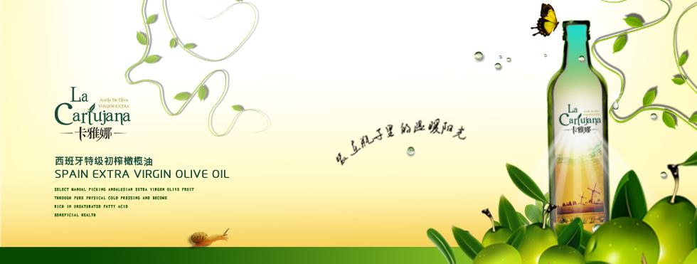 雷竞技raybet最新版下载